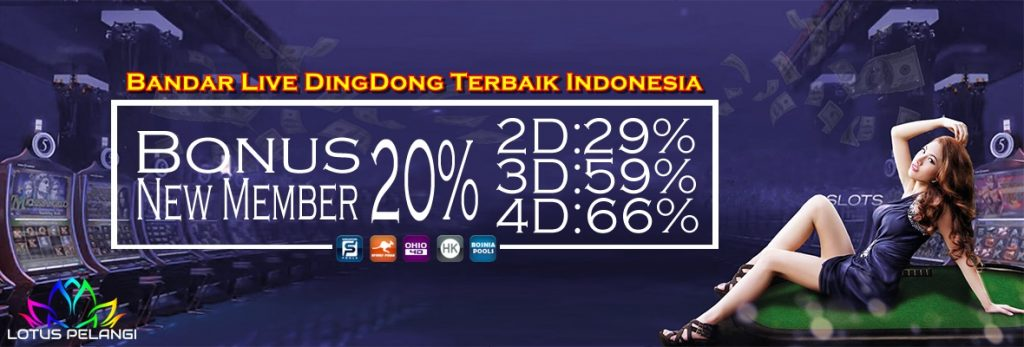 Bandar Live DingDong Terbaik Indonesia